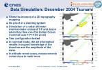 data simulation december 2004 tsunami
