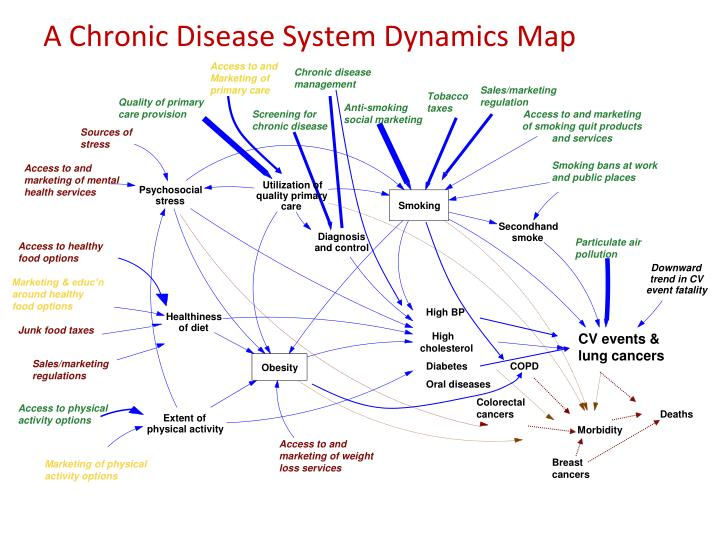 A Chronic Disease System Dynamics Map