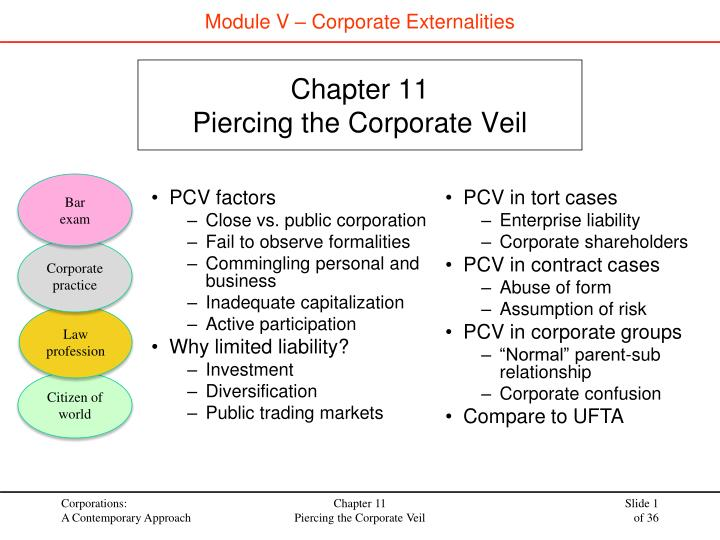 chapter 11 piercing the corporate veil n.