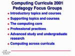 computing curricula 2001 pedagogy focus groups