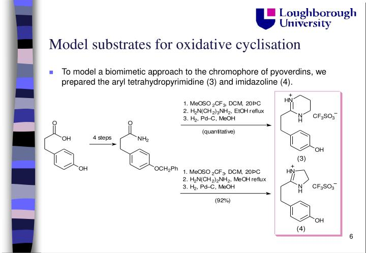 Model substrates for oxidative cyclisation