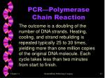 pcr polymerase chain reaction1