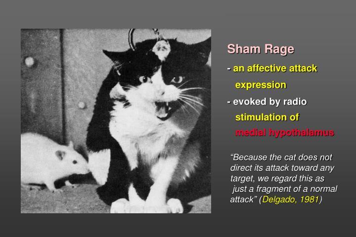 Sham Rage