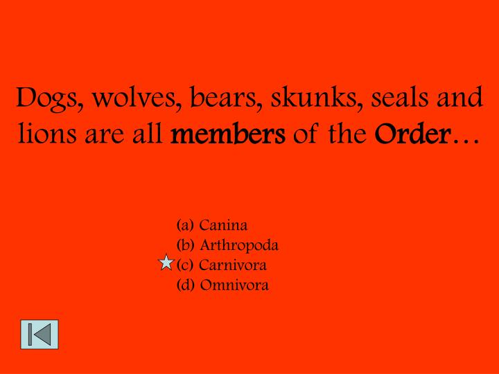 Dogs, wolves, bears, skunks, seals and lions are all