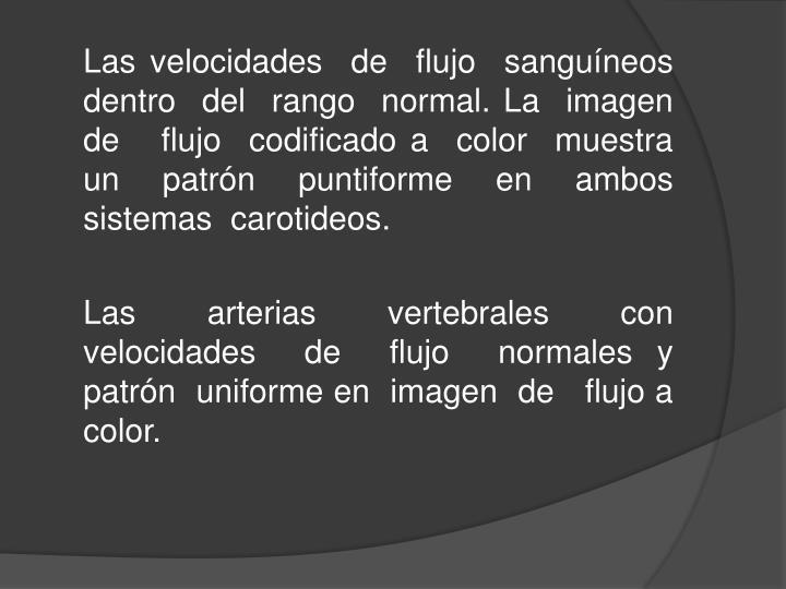 Las velocidades  de  flujo  sanguíneos dentro  del  rango  normal. La  imagen  de   flujo  codificado a  color  muestra  un  patrón  puntiforme  en  ambos   sistemas  carotideos.