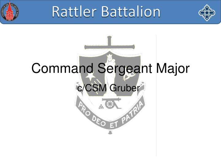 c/CSM Gruber