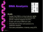 dna analysis1