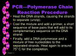 pcr polymerase chain reaction procedure