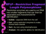 rflp restriction fragment length polymorphisms