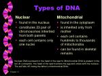 types of dna