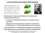 lock and key and induced fit binding