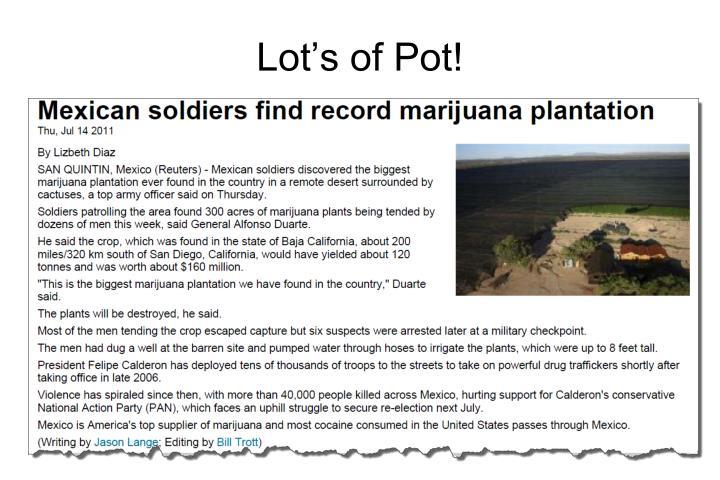 Lot's of Pot!