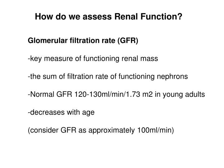 How do we assess Renal Function?