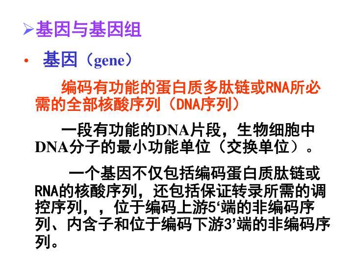基因与基因组