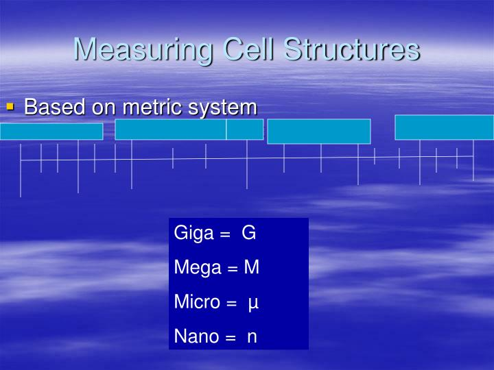 Measuring Cell Structures