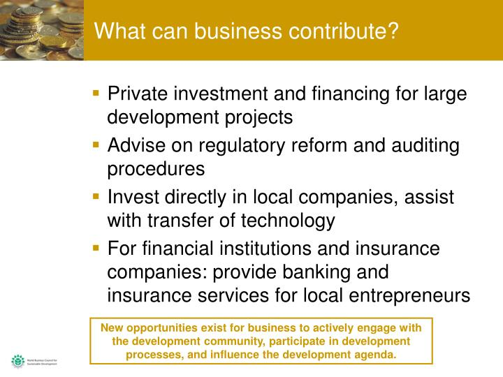 What can business contribute?