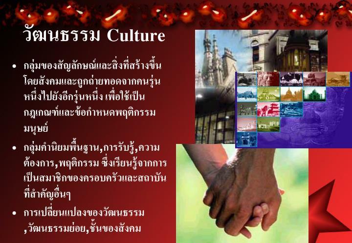 วัฒนธรรม Culture
