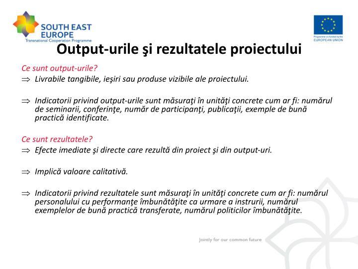 Output-urile şi rezultatele proiectului