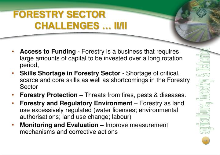 FORESTRY SECTOR