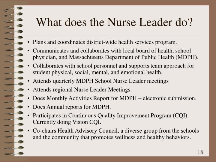 What does the Nurse Leader do?