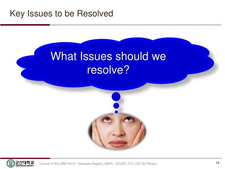 Key Issues to be Resolved