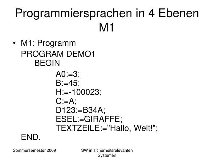 Programmiersprachen in 4 Ebenen M1