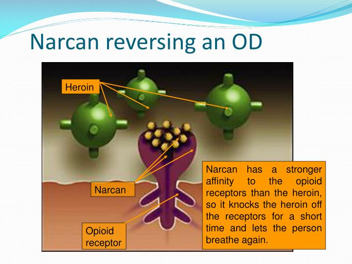 Narcan reversing an OD