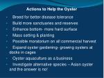 actions to help the oyster