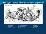 the oyster bar as a habitat for other organisms