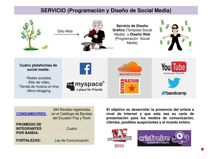 SERVICIO (Programación y Diseño de Social Media)