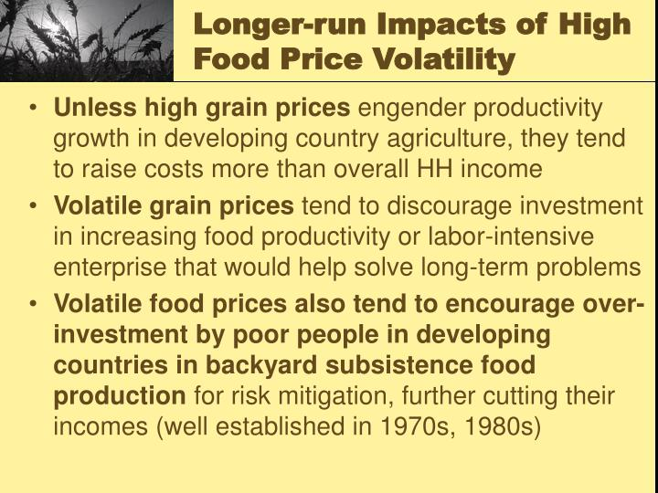 Longer-run Impacts of High Food Price Volatility