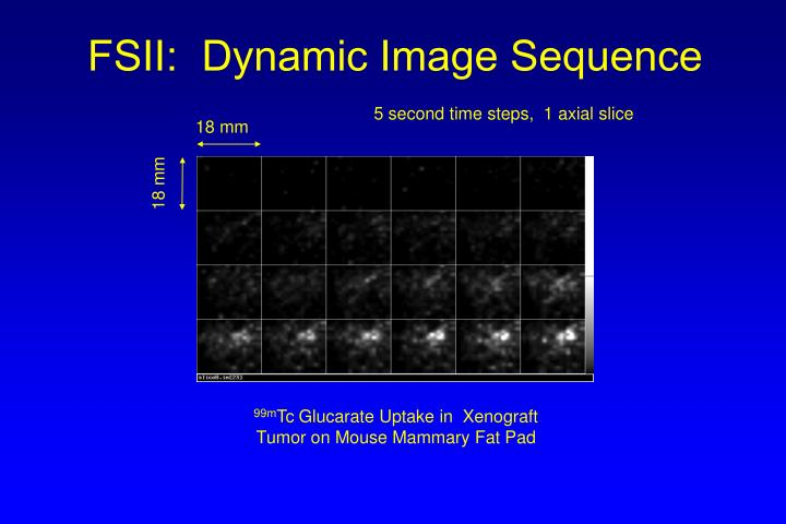 Fsii dynamic image sequence