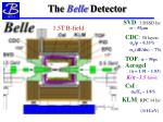 the belle detector