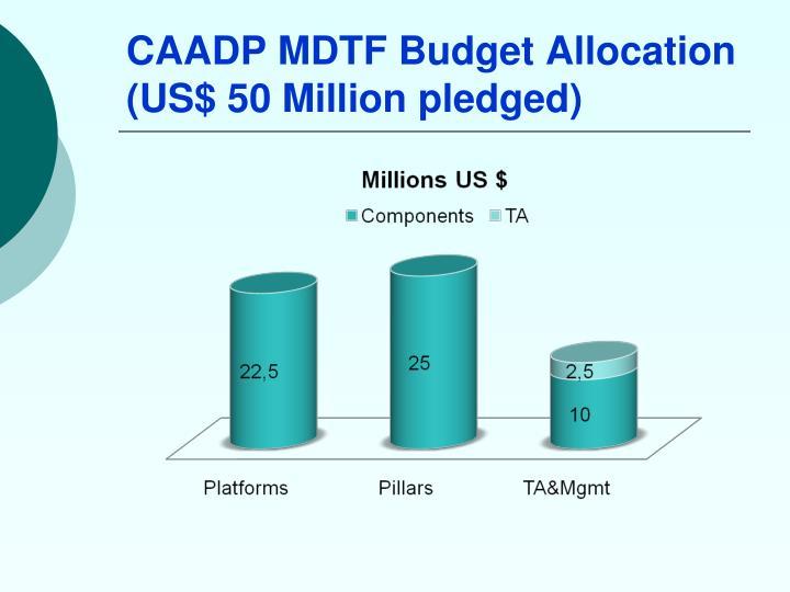 CAADP MDTF Budget Allocation