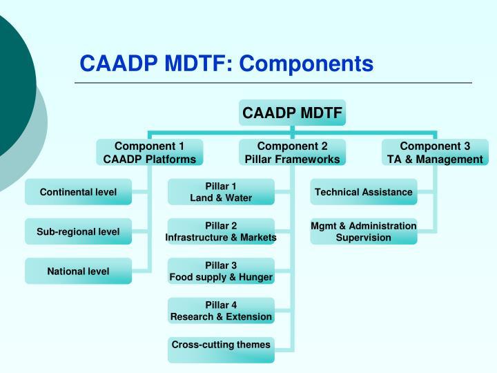 CAADP MDTF: Components