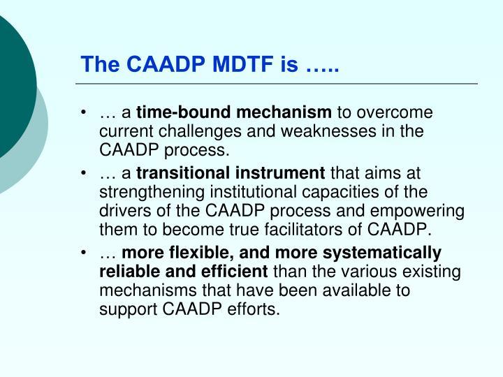 The CAADP MDTF is …..