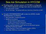 sea ice simulation in hycom