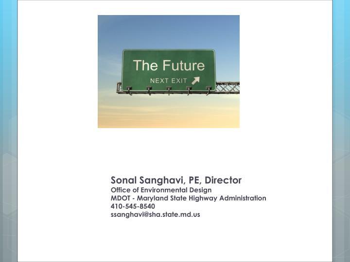 Sonal Sanghavi, PE, Director