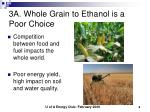 3a whole grain to ethanol is a poor choice