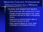 what the forensic professional should expect as a witness