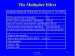 the multiplier effect2