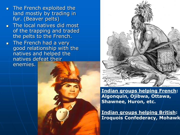 The French exploited the land mostly by trading in fur. (Beaver pelts)