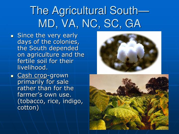 The Agricultural South—