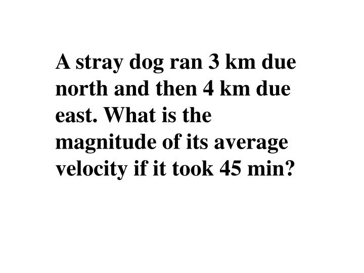 A stray dog ran 3 km due north and then 4 km due east. What is the magnitude of its average velocity if it took 45 min?