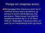 pompa ion respirasi anion