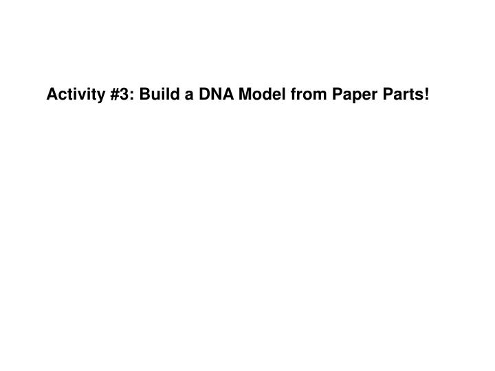 Activity #3: Build a DNA Model from Paper Parts!