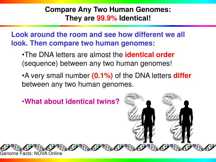 Compare Any Two Human Genomes: