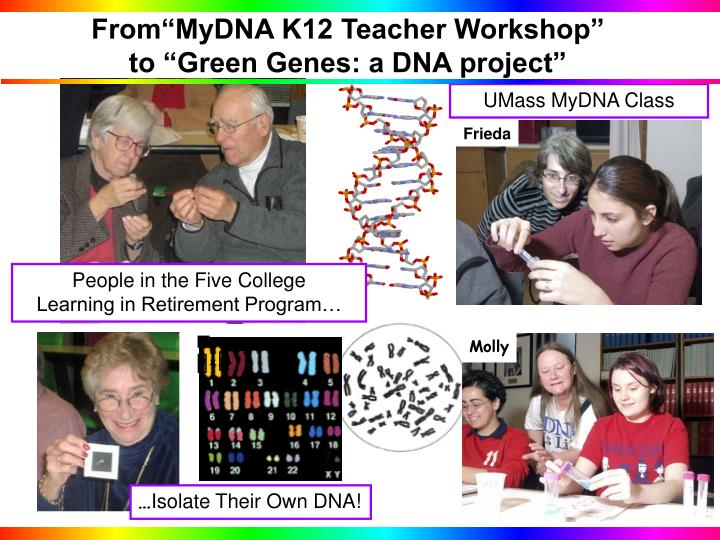 From mydna k12 teacher workshop to green genes a dna project