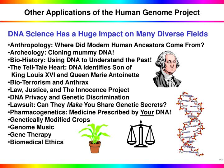 Other Applications of the Human Genome Project