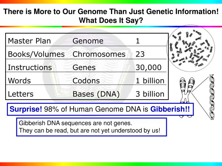 There is More to Our Genome Than Just Genetic Information!